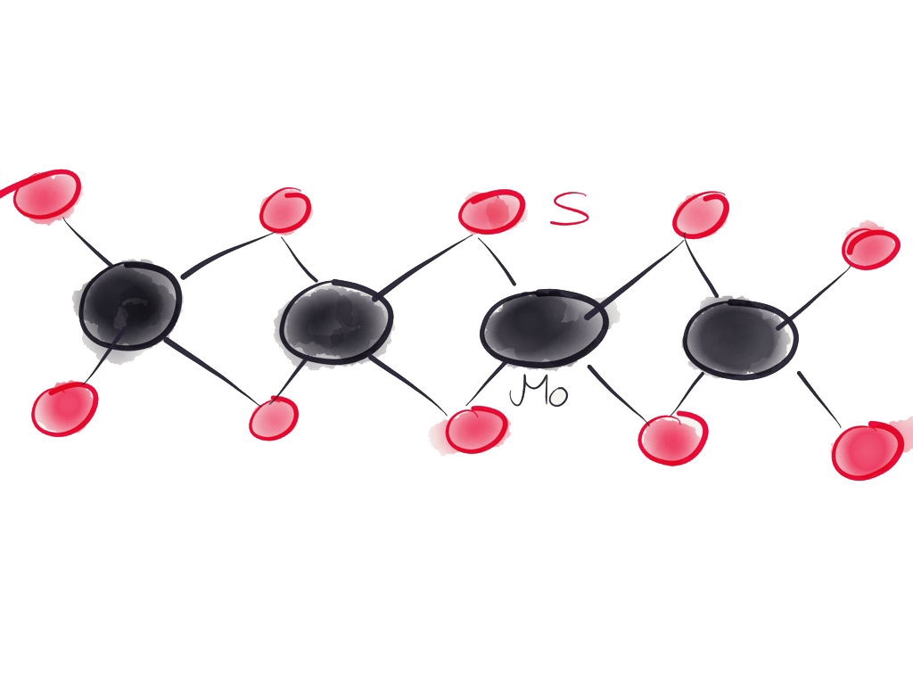 sketch of mos2 monolayer, by c. gies